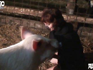 Ks Farm 002
